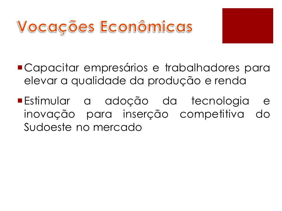 Vocações Econômicas Capacitar empresários e trabalhadores para elevar a qualidade da produção e renda.
