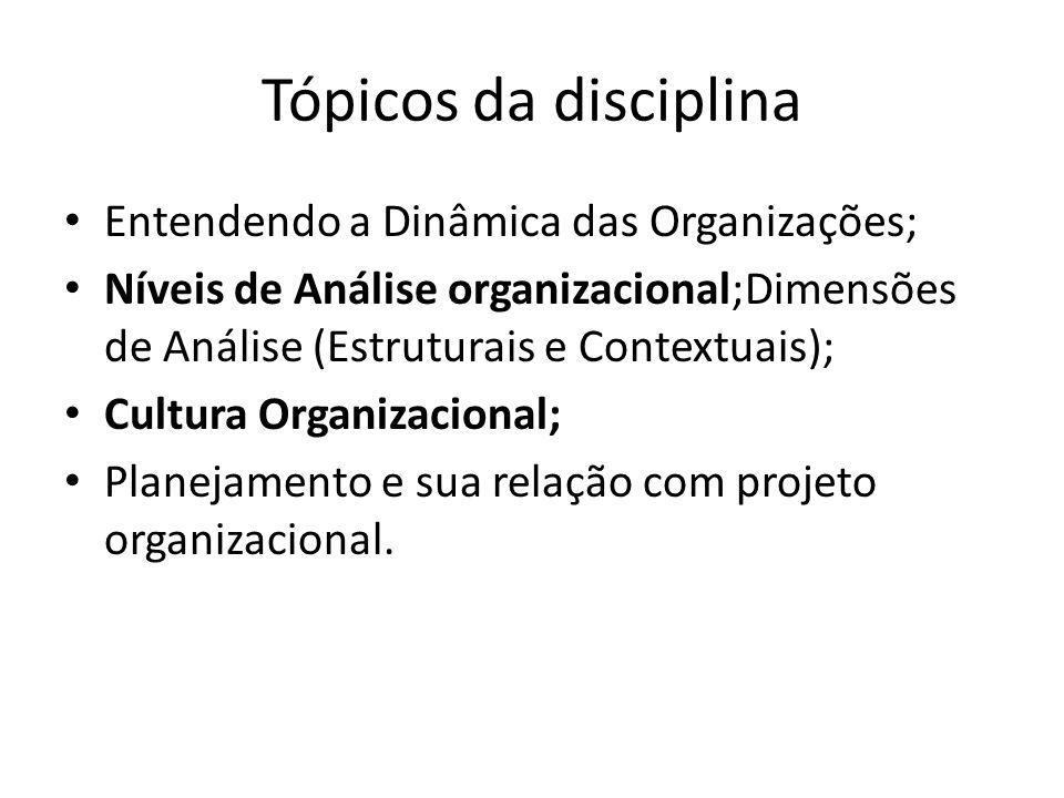 Tópicos da disciplina Entendendo a Dinâmica das Organizações;