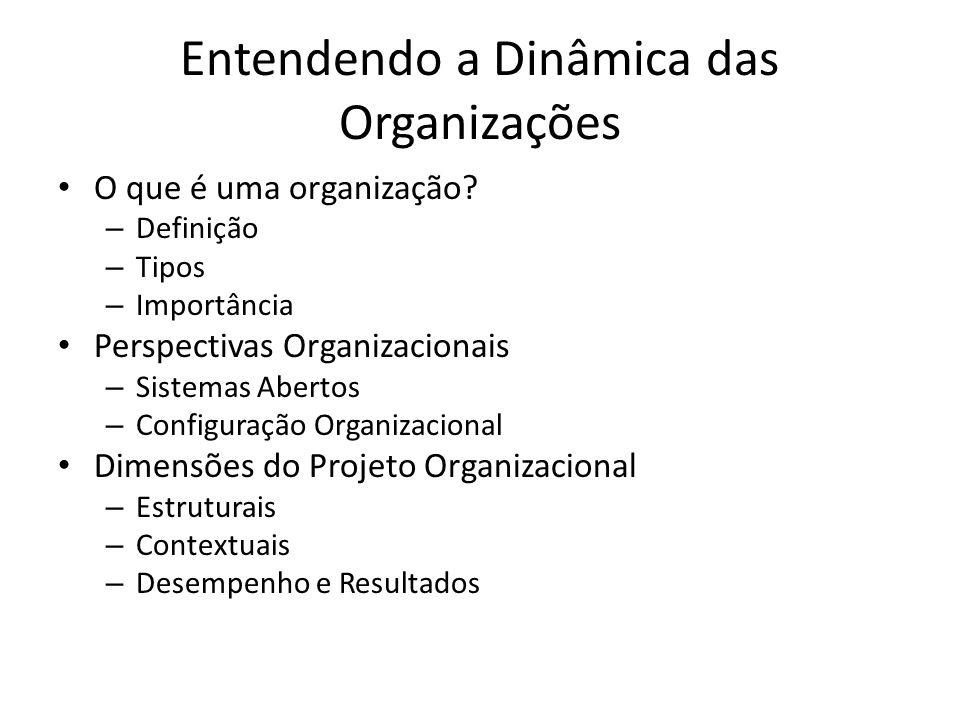 Entendendo a Dinâmica das Organizações