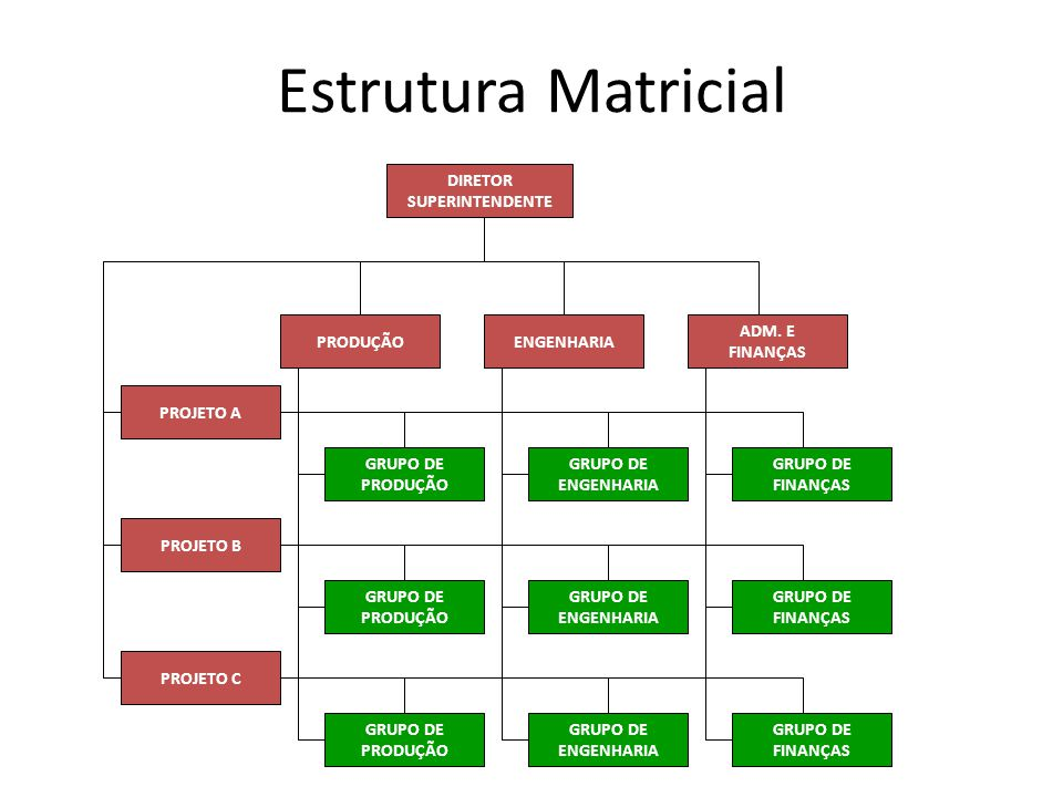 Estrutura Matricial DIRETOR SUPERINTENDENTE ADM. E FINANÇAS ENGENHARIA