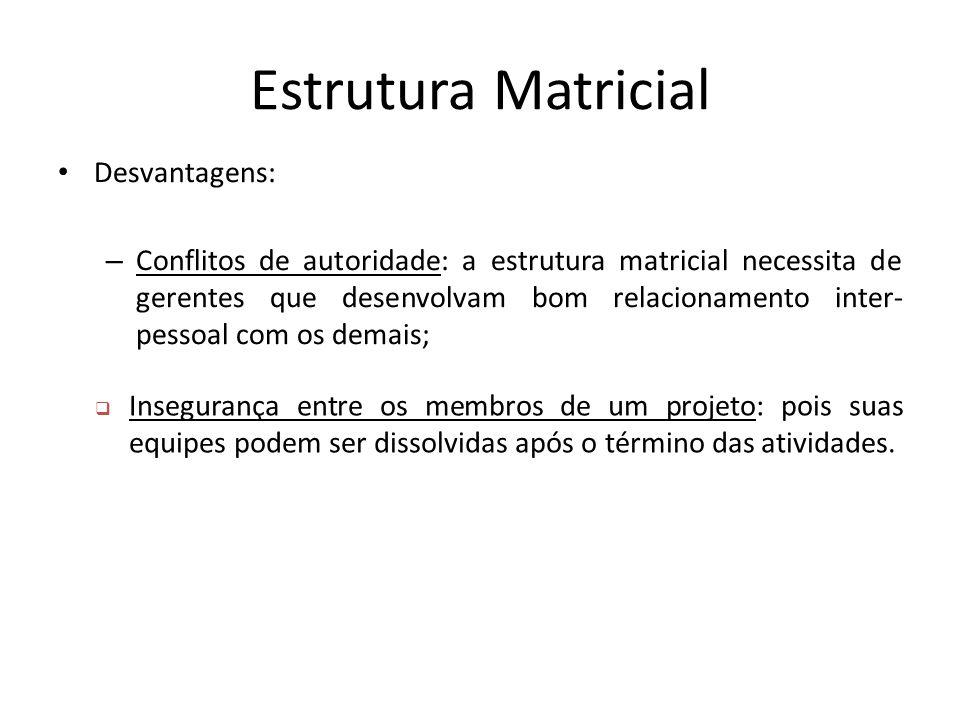 Estrutura Matricial Desvantagens: