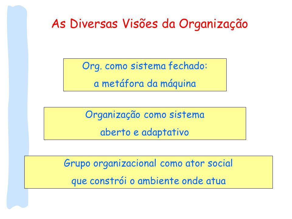 As Diversas Visões da Organização