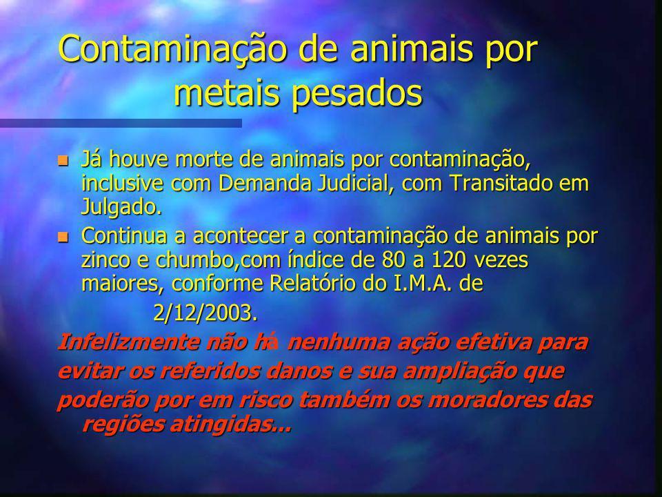 Contaminação de animais por metais pesados