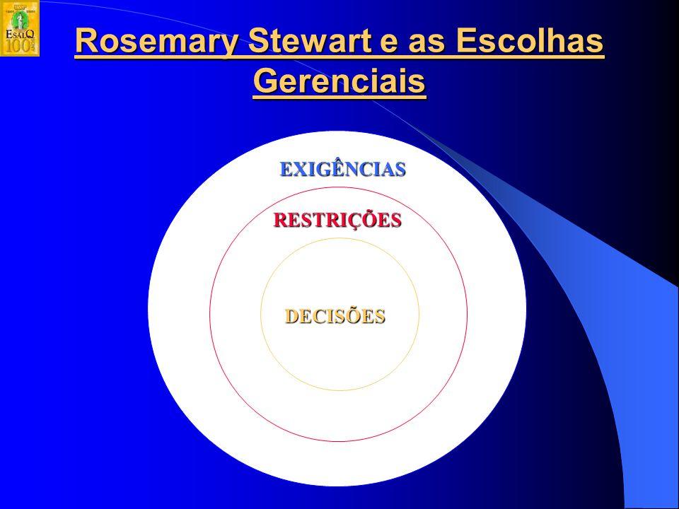 Rosemary Stewart e as Escolhas Gerenciais