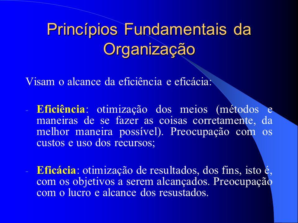 Princípios Fundamentais da Organização