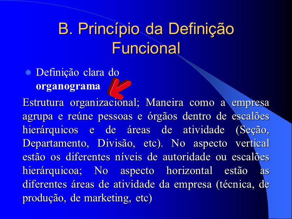 B. Princípio da Definição Funcional