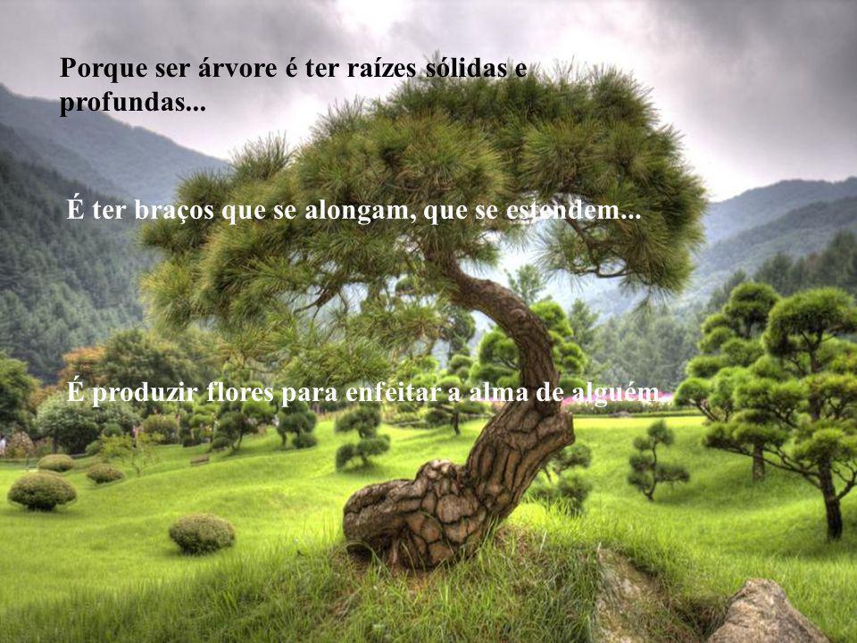 Porque ser árvore é ter raízes sólidas e