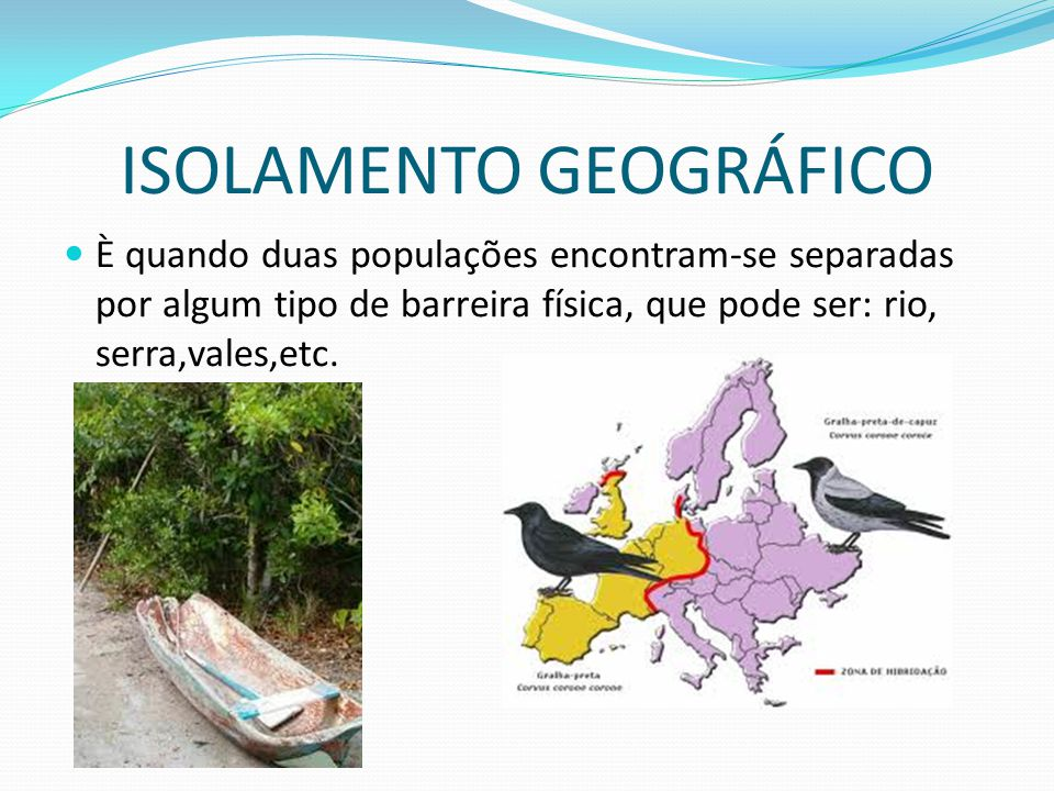 ISOLAMENTO GEOGRÁFICO