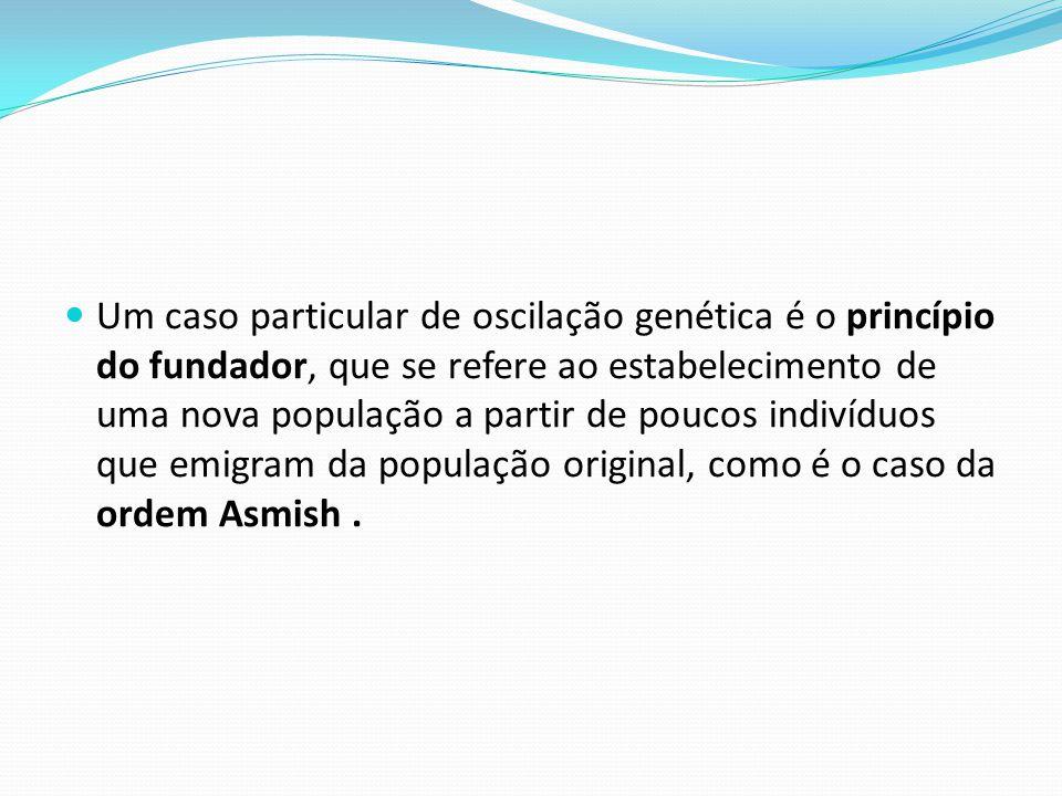 Um caso particular de oscilação genética é o princípio do fundador, que se refere ao estabelecimento de uma nova população a partir de poucos indivíduos que emigram da população original, como é o caso da ordem Asmish .