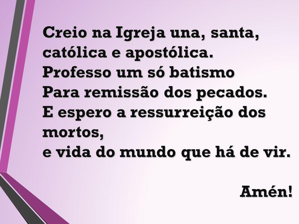 Creio na Igreja una, santa, católica e apostólica