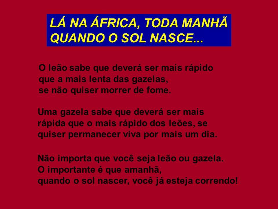 LÁ NA ÁFRICA, TODA MANHÃ QUANDO O SOL NASCE...