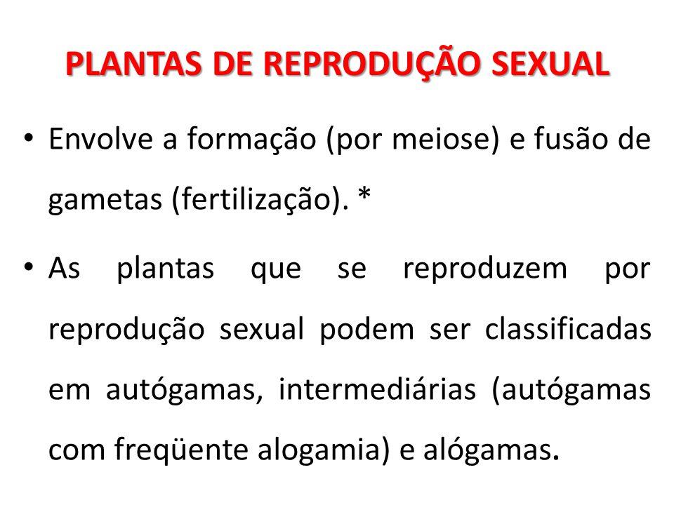 PLANTAS DE REPRODUÇÃO SEXUAL