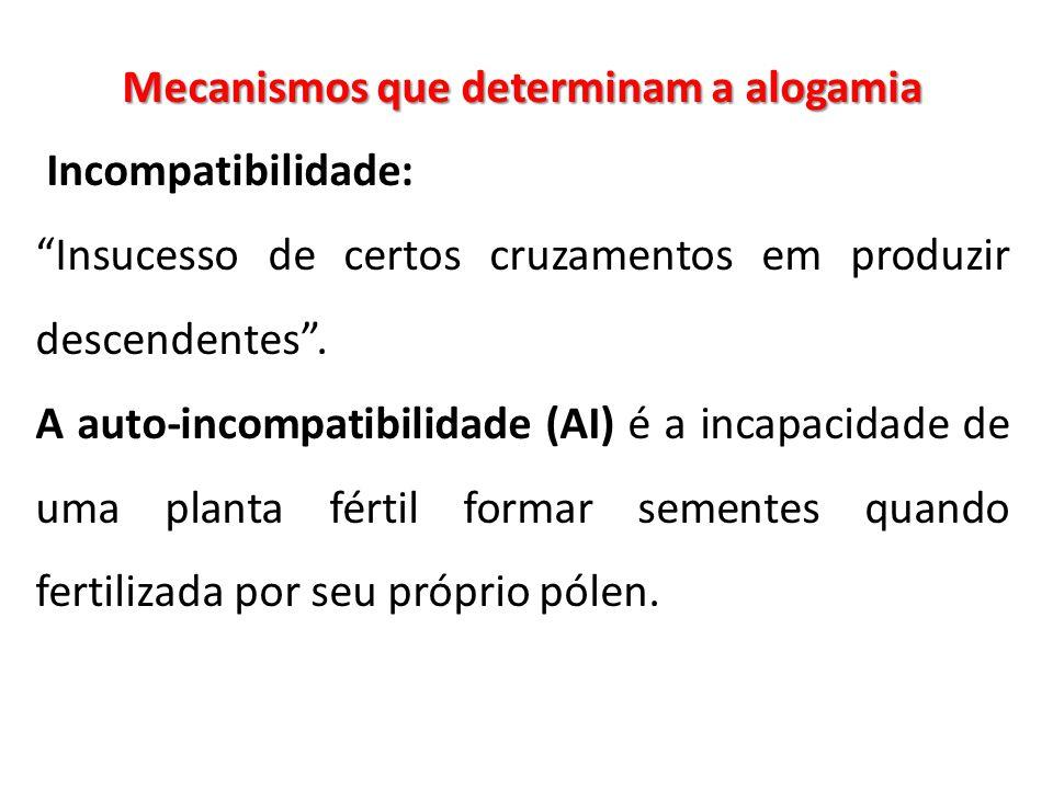 Mecanismos que determinam a alogamia