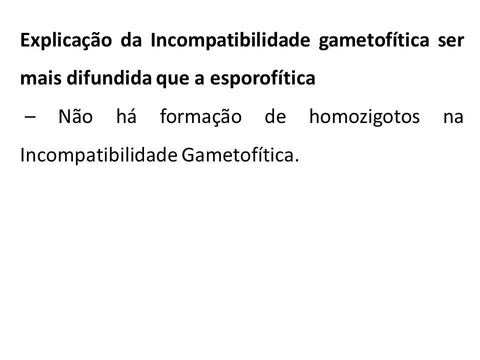 Explicação da Incompatibilidade gametofítica ser mais difundida que a esporofítica
