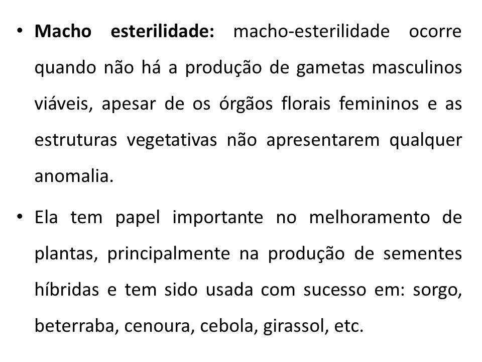 Macho esterilidade: macho-esterilidade ocorre quando não há a produção de gametas masculinos viáveis, apesar de os órgãos florais femininos e as estruturas vegetativas não apresentarem qualquer anomalia.