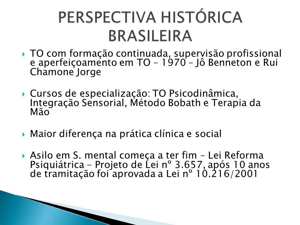 PERSPECTIVA HISTÓRICA BRASILEIRA
