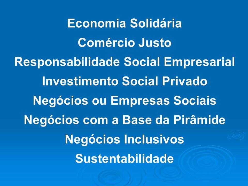 Responsabilidade Social Empresarial Investimento Social Privado