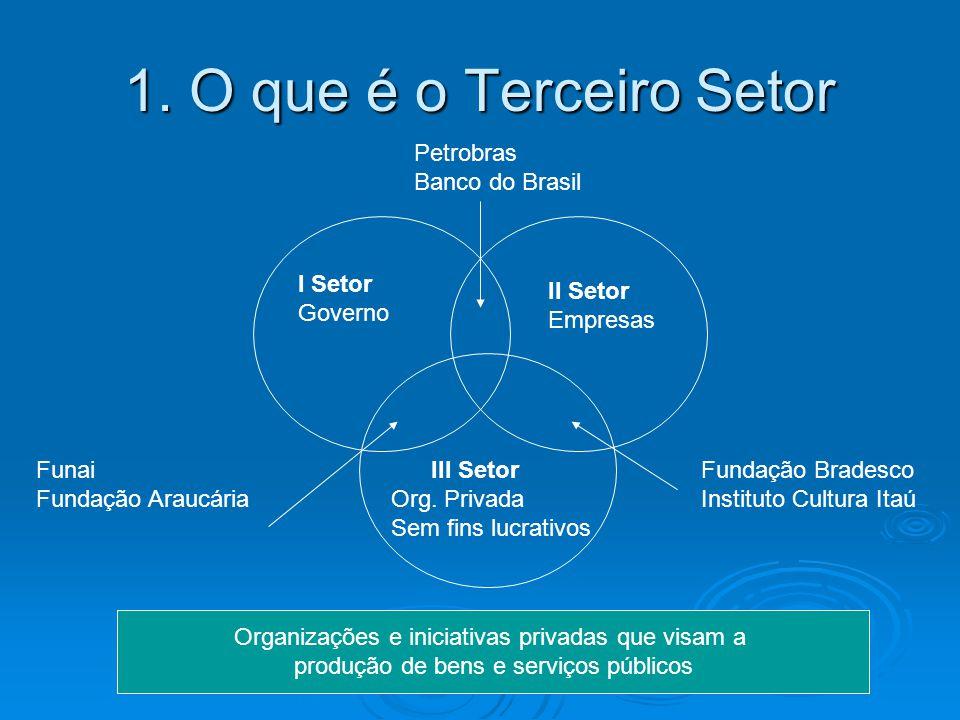 1. O que é o Terceiro Setor Petrobras Banco do Brasil I Setor Governo
