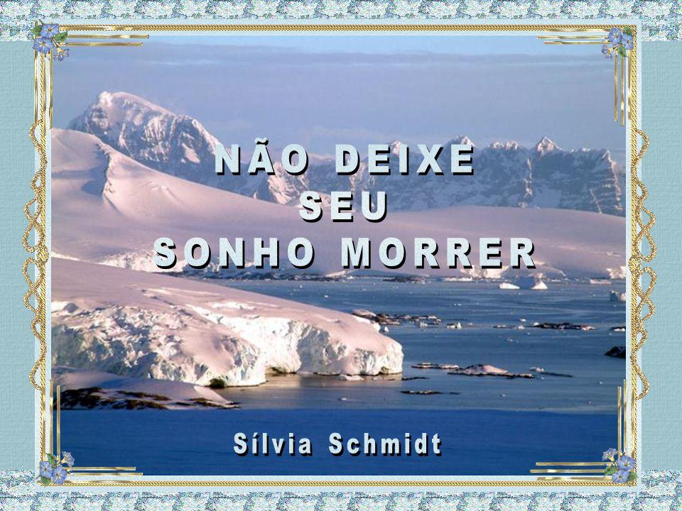 NÃO DEIXE SEU SONHO MORRER Sílvia Schmidt