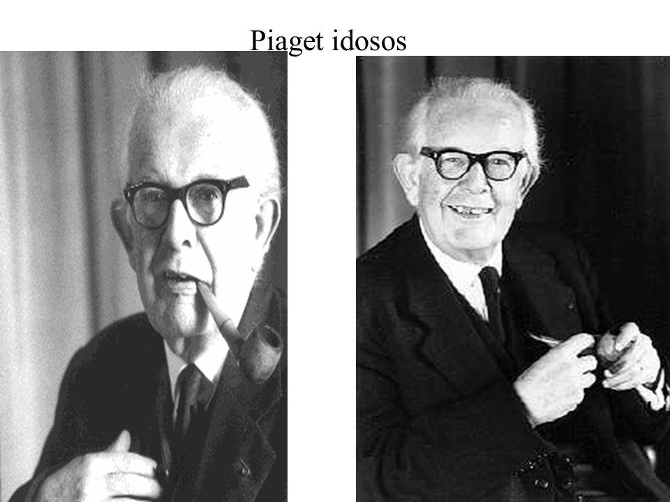 Piaget idosos
