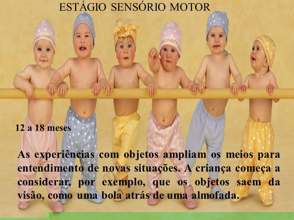 ESTÁGIO SENSÓRIO MOTOR
