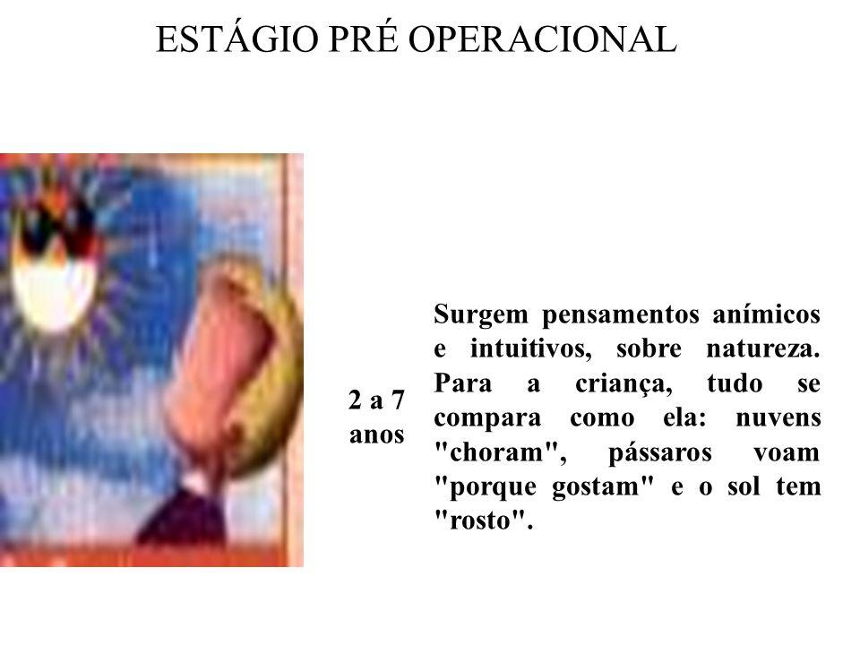 ESTÁGIO PRÉ OPERACIONAL