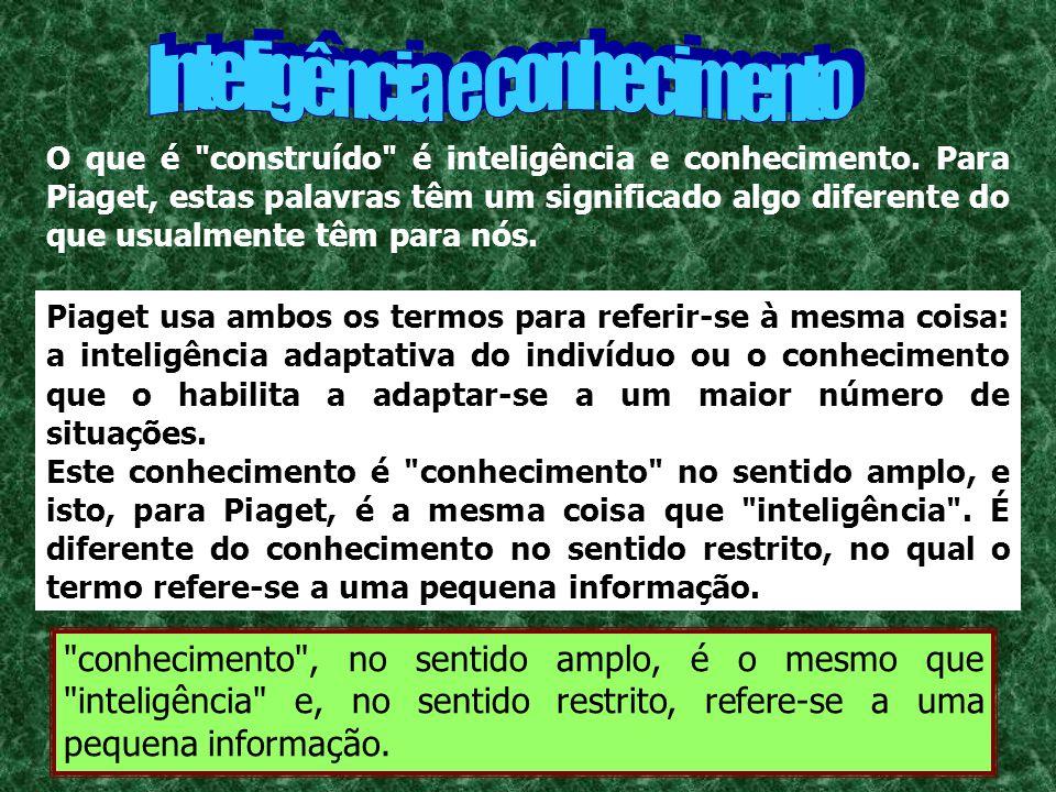 Inteligência e conhecimento