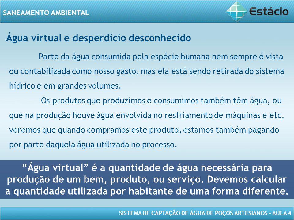 Água virtual e desperdício desconhecido