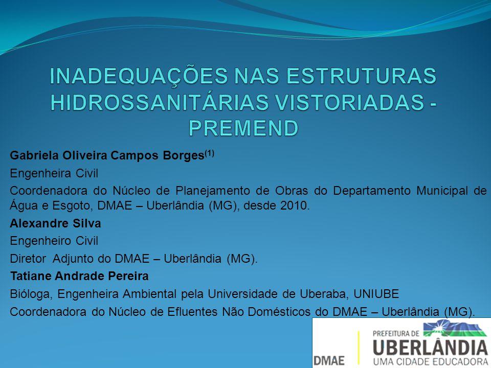 INADEQUAÇÕES NAS ESTRUTURAS HIDROSSANITÁRIAS VISTORIADAS - PREMEND