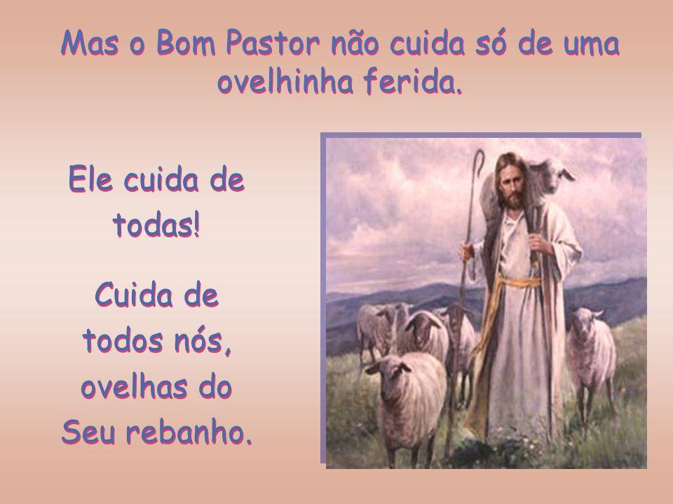 Mas o Bom Pastor não cuida só de uma ovelhinha ferida.