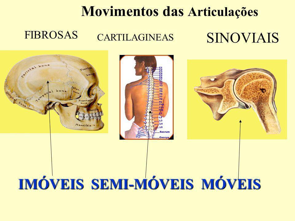 Movimentos das Articulações