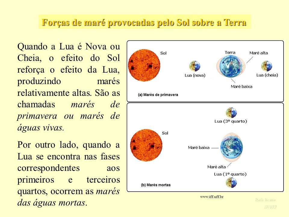 Forças de maré provocadas pelo Sol sobre a Terra