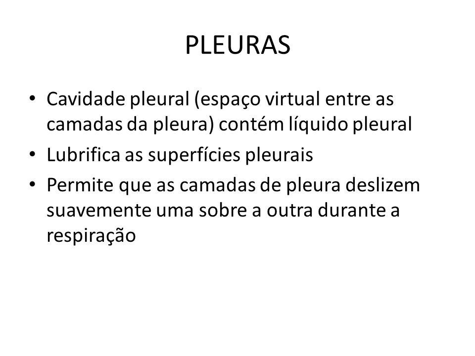 PLEURAS Cavidade pleural (espaço virtual entre as camadas da pleura) contém líquido pleural. Lubrifica as superfícies pleurais.