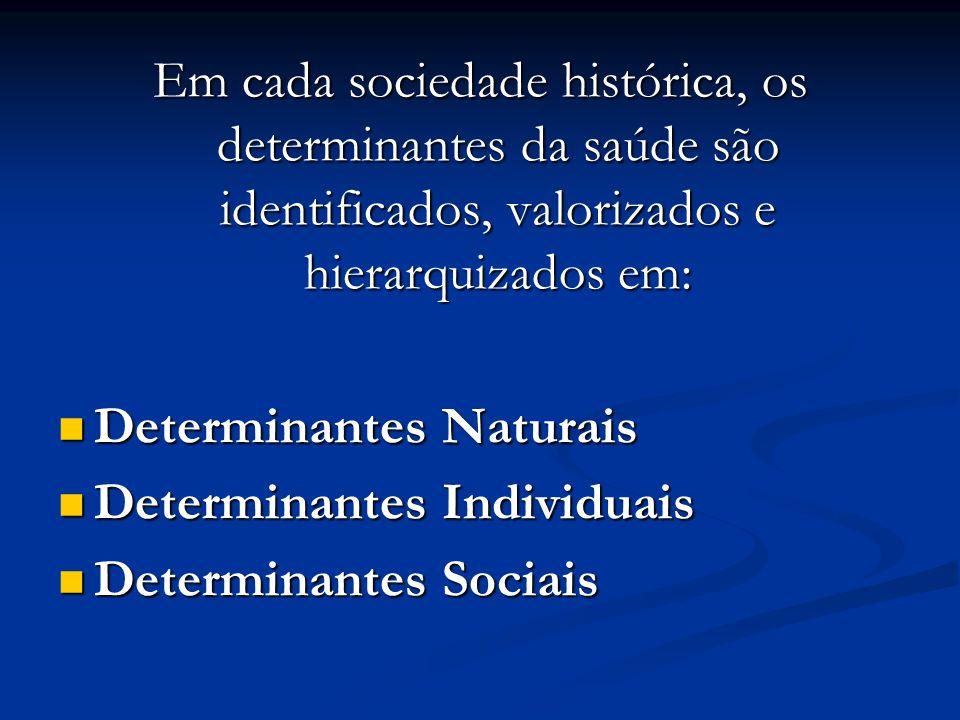 Em cada sociedade histórica, os determinantes da saúde são identificados, valorizados e hierarquizados em: