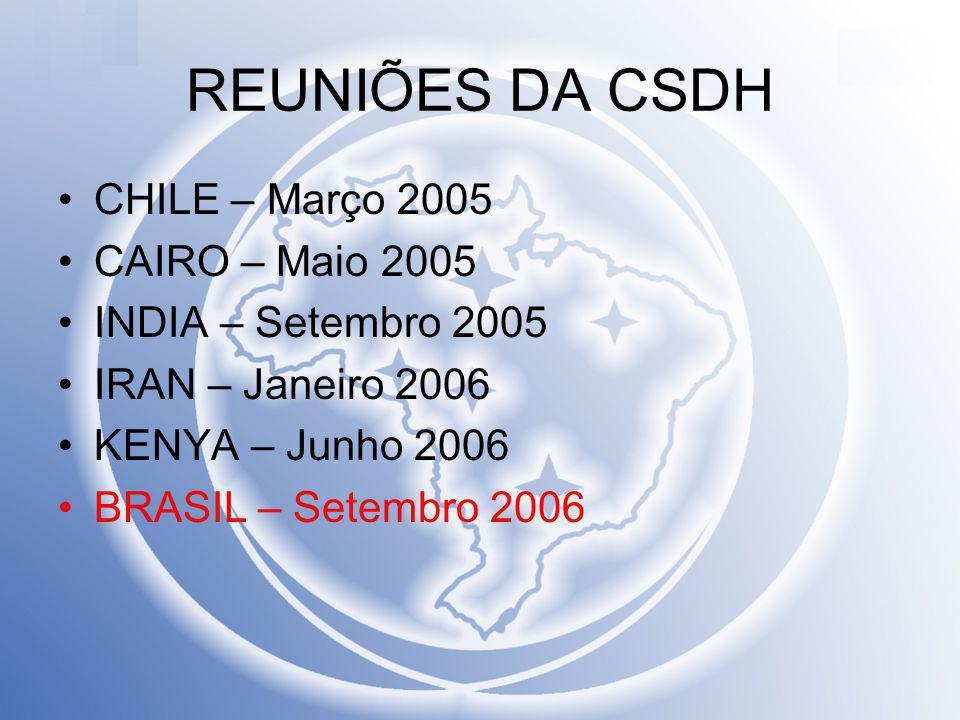 REUNIÕES DA CSDH CHILE – Março 2005 CAIRO – Maio 2005