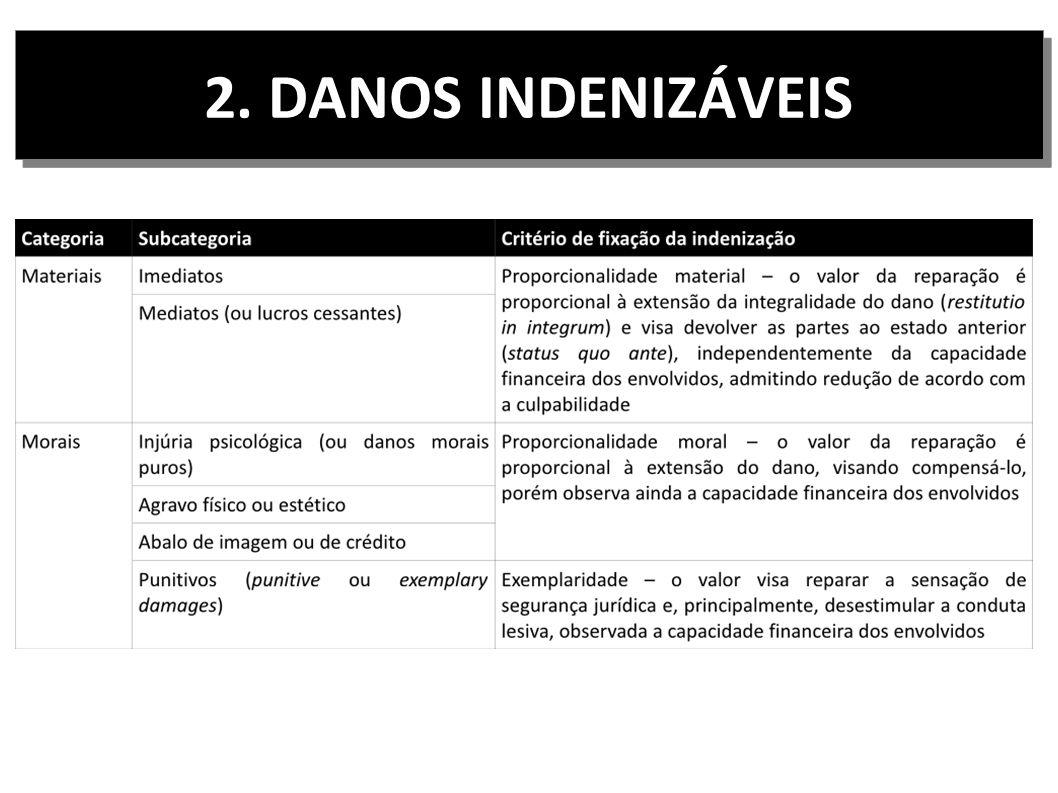 2. DANOS INDENIZÁVEIS