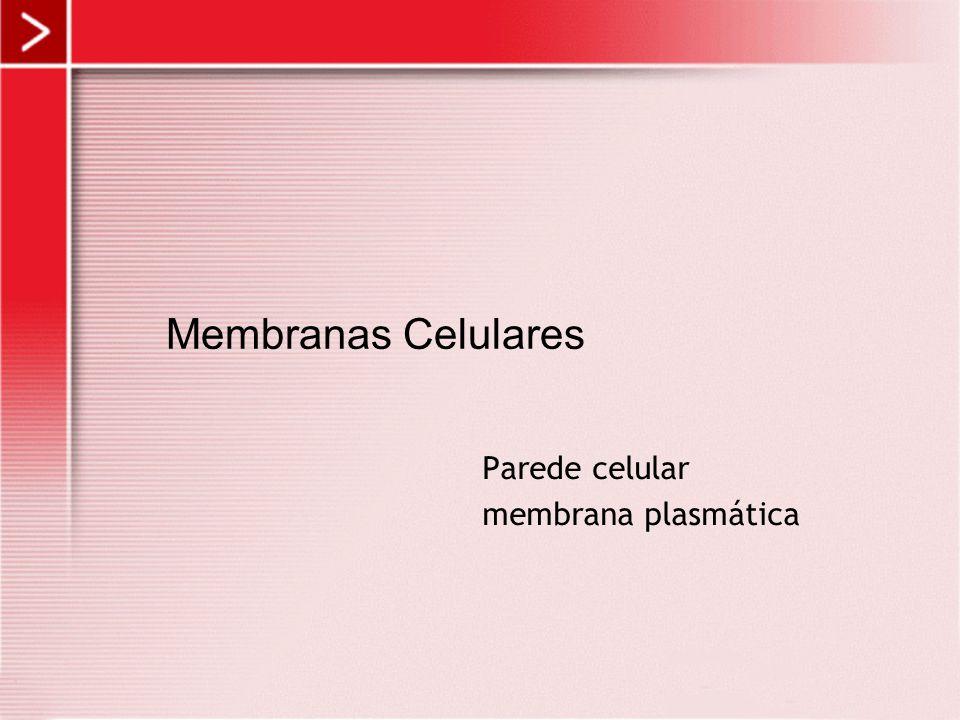 Parede celular membrana plasmática