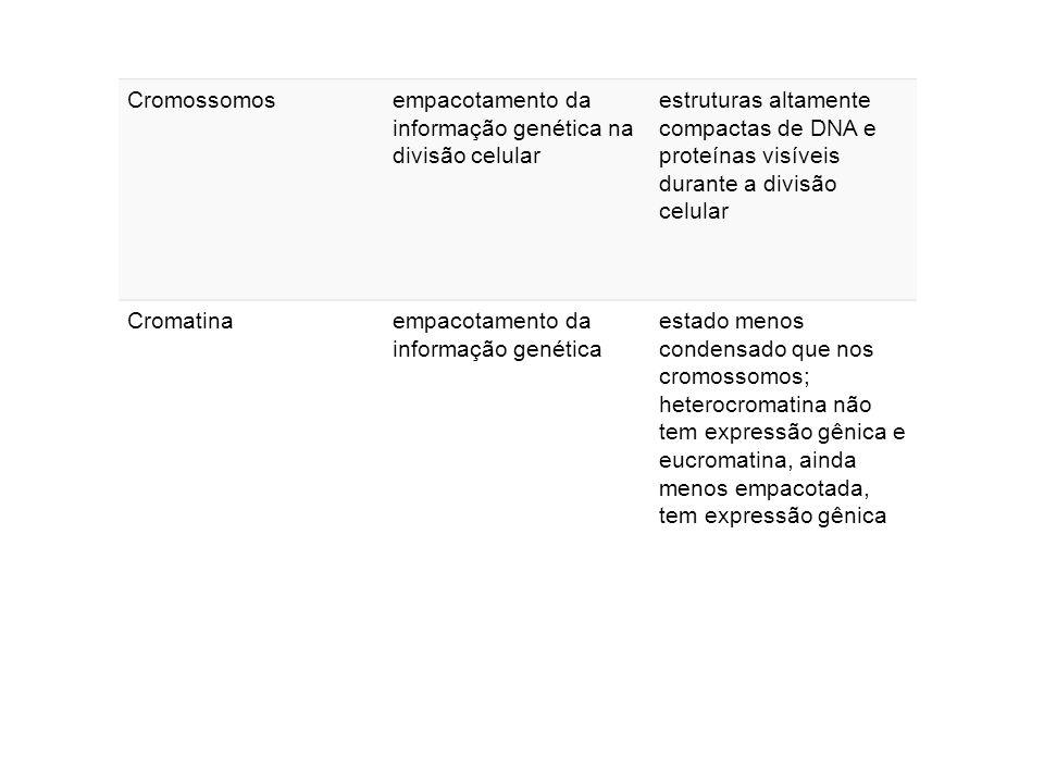 Cromossomos empacotamento da informação genética na divisão celular.