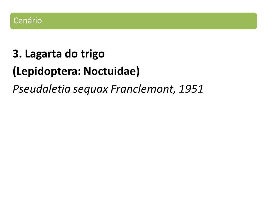 Cenário 3. Lagarta do trigo (Lepidoptera: Noctuidae) Pseudaletia sequax Franclemont, 1951