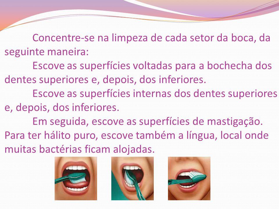 Concentre-se na limpeza de cada setor da boca, da seguinte maneira: