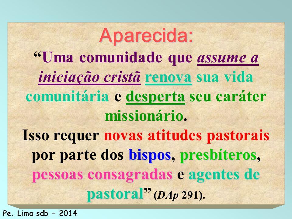 Aparecida: Uma comunidade que assume a iniciação cristã renova sua vida comunitária e desperta seu caráter missionário.