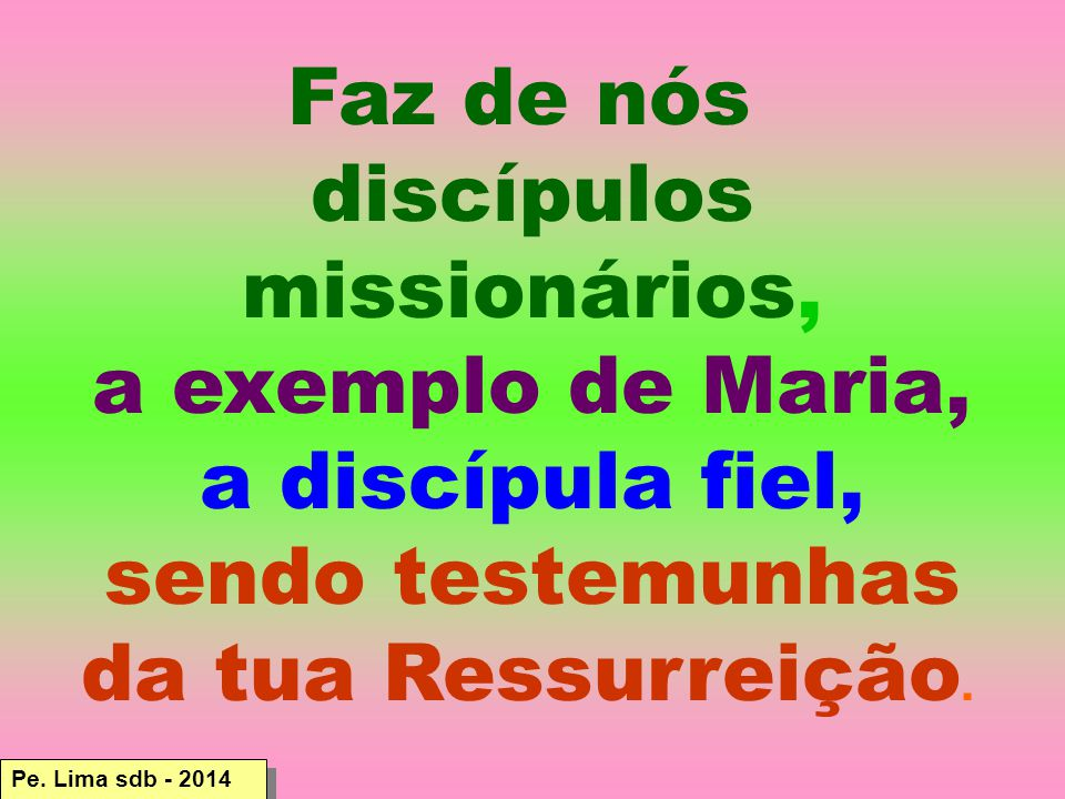 Faz de nós discípulos missionários, a exemplo de Maria,