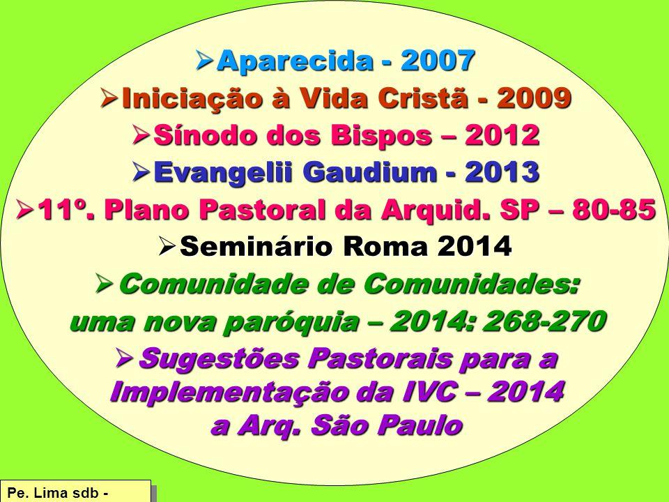 Iniciação à Vida Cristã - 2009 Sínodo dos Bispos – 2012
