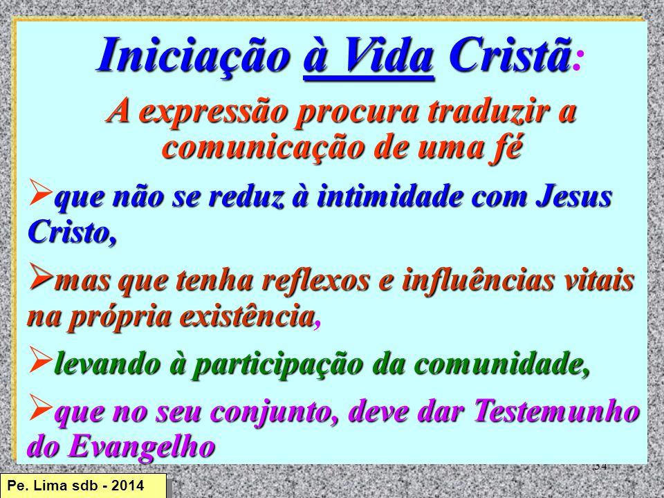 Iniciação à Vida Cristã: