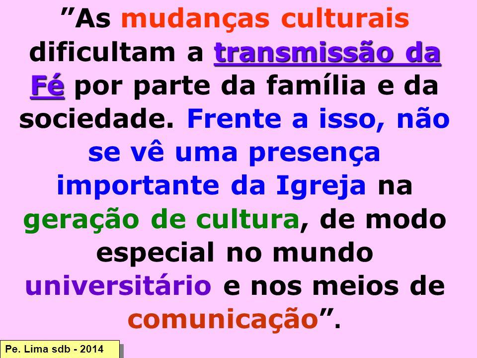 As mudanças culturais dificultam a transmissão da Fé por parte da família e da sociedade. Frente a isso, não se vê uma presença importante da Igreja na geração de cultura, de modo especial no mundo universitário e nos meios de comunicação .