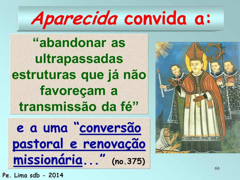 e a uma conversão pastoral e renovação missionária... (no.375)