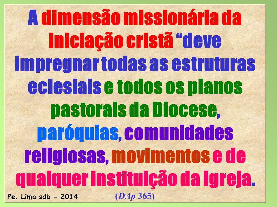 A dimensão missionária da iniciação cristã deve impregnar todas as estruturas eclesiais e todos os planos pastorais da Diocese, paróquias, comunidades religiosas, movimentos e de qualquer instituição da Igreja. (DAp 365)