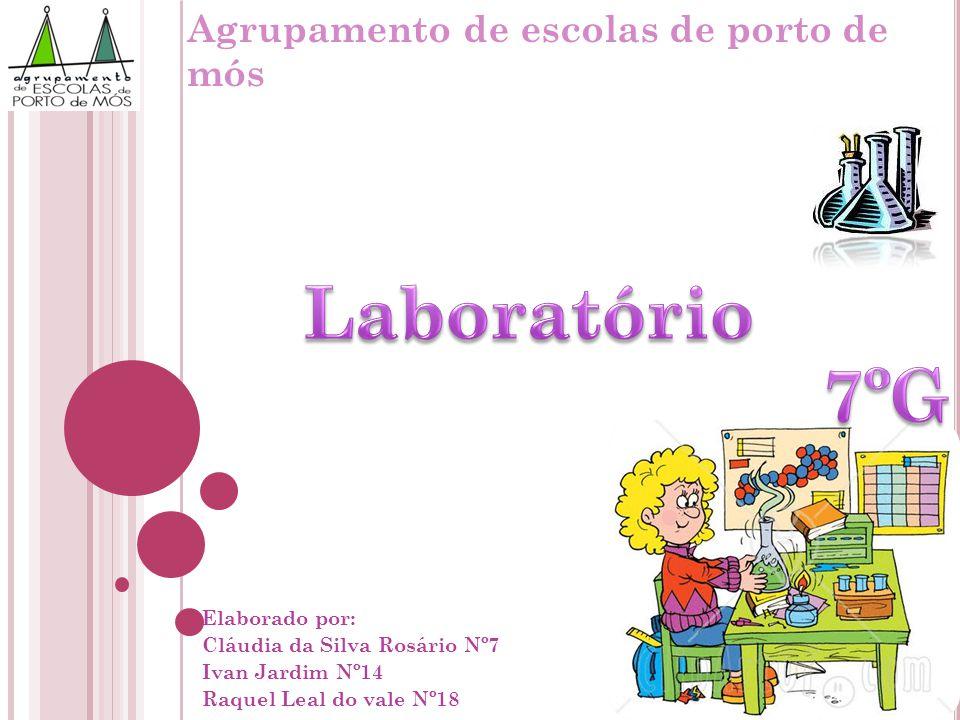 Laboratório 7ºG Agrupamento de escolas de porto de mós Elaborado por: