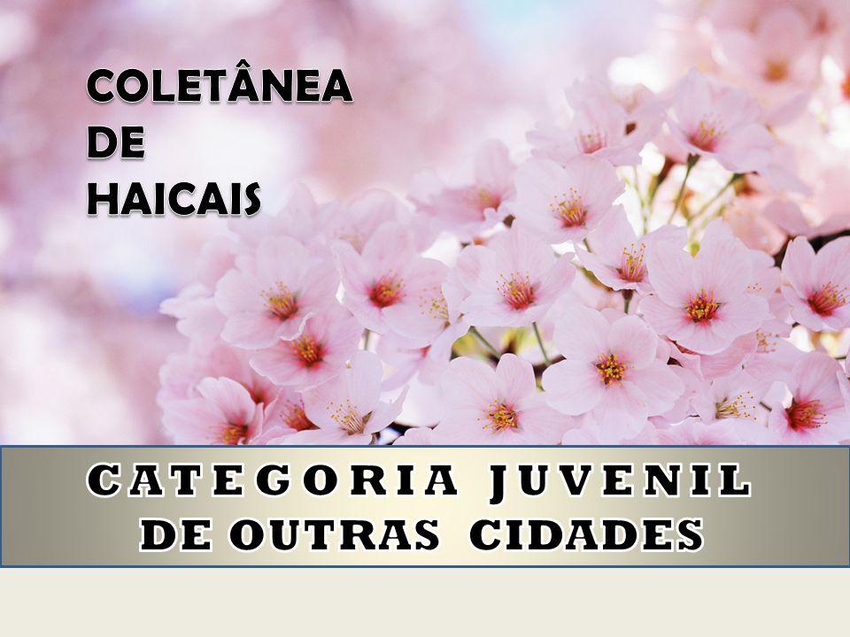 CATEGORIA JUVENIL DE OUTRAS CIDADES