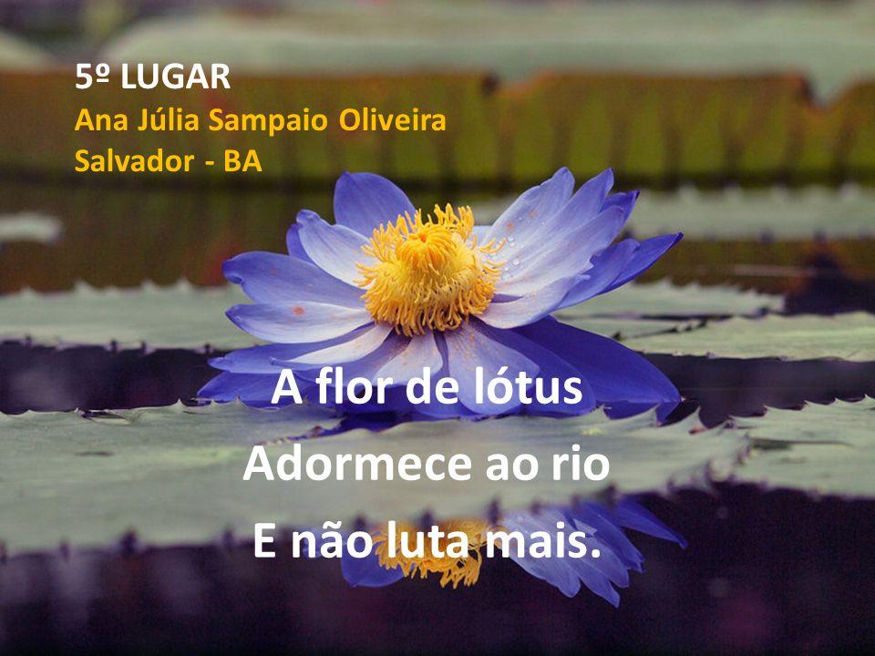 5º LUGAR Ana Júlia Sampaio Oliveira Salvador - BA